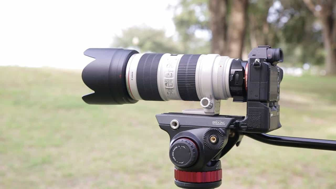 Answered: Do Canon Lenses Work On Sony Cameras?