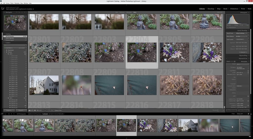 Lightroom 6 Library Tab